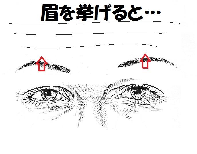 眉と額2.jpg