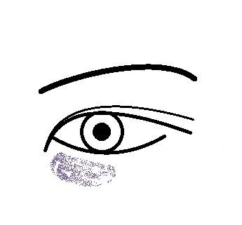 眼の下図紫グマ.jpg