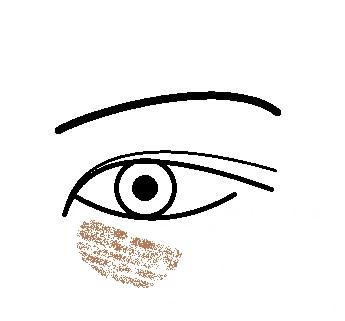 眼の下図茶グマ.jpg