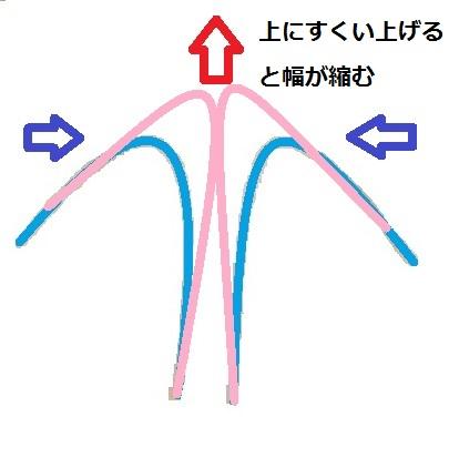 鼻尖軟骨切除無し縫縮図.jpg
