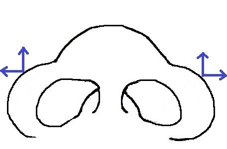 鼻模式図横縦広.jpg