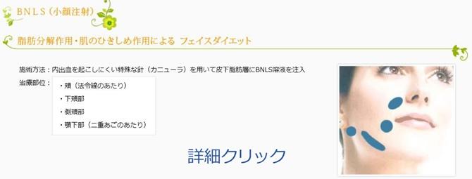 BNLS11-670.jpg