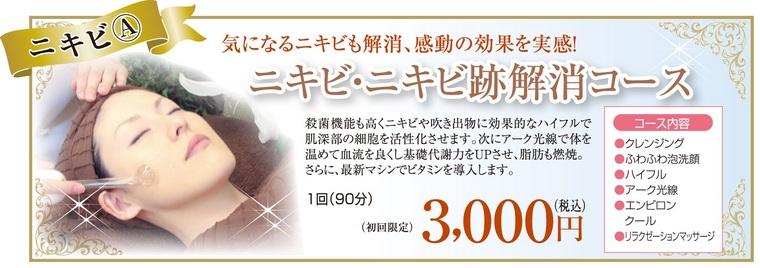 ニキビ対策・ニキビケア/エステサロンピュア 奈良・大阪・京都・三重・和歌山