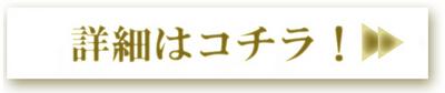 2016-03moni-syousai.jpgのサムネール画像のサムネール画像