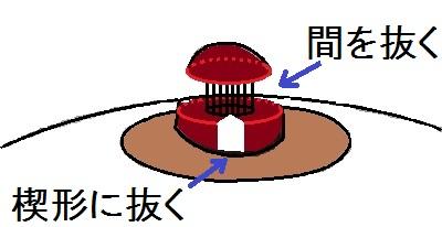 kanbotsucut2.jpg