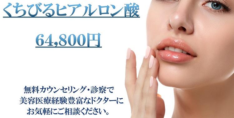 shutterstock_1018180060くちびるヒアルロン酸-1-750クリックなし1.jpg